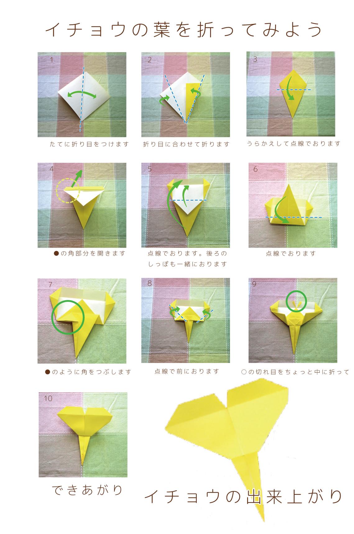 折り紙の折り方 イチョウの葉